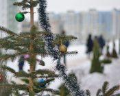 Крещение 2019 - Храм Николая Японского (фото-7)