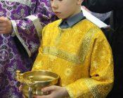 Освящение-икон-Пресвятой-Богородицы-и-Спасителя-(фото-5)