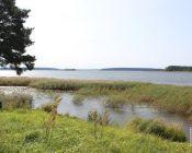 паломническая поездка на озеро Селигер  29