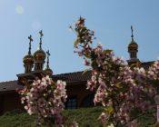 Pasha-2019-v-hrame-Nikolaya-YAponskogo-foto-2