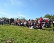 экологический фестиваль птушкі над царквой 2018 (foto 10)
