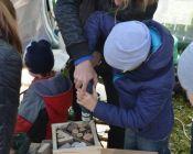экологический фестиваль птушкі над царквой 2018 (foto 44)