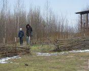 zimnij-fest-shchadrets-na-rayone-2020-37