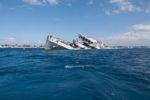 Кораблекрушение в гавани. Слово о несчастных браках